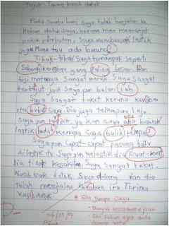 my idiolect gcse essay